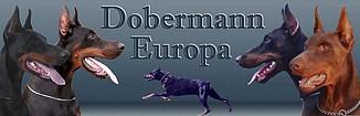 dobermann europa
